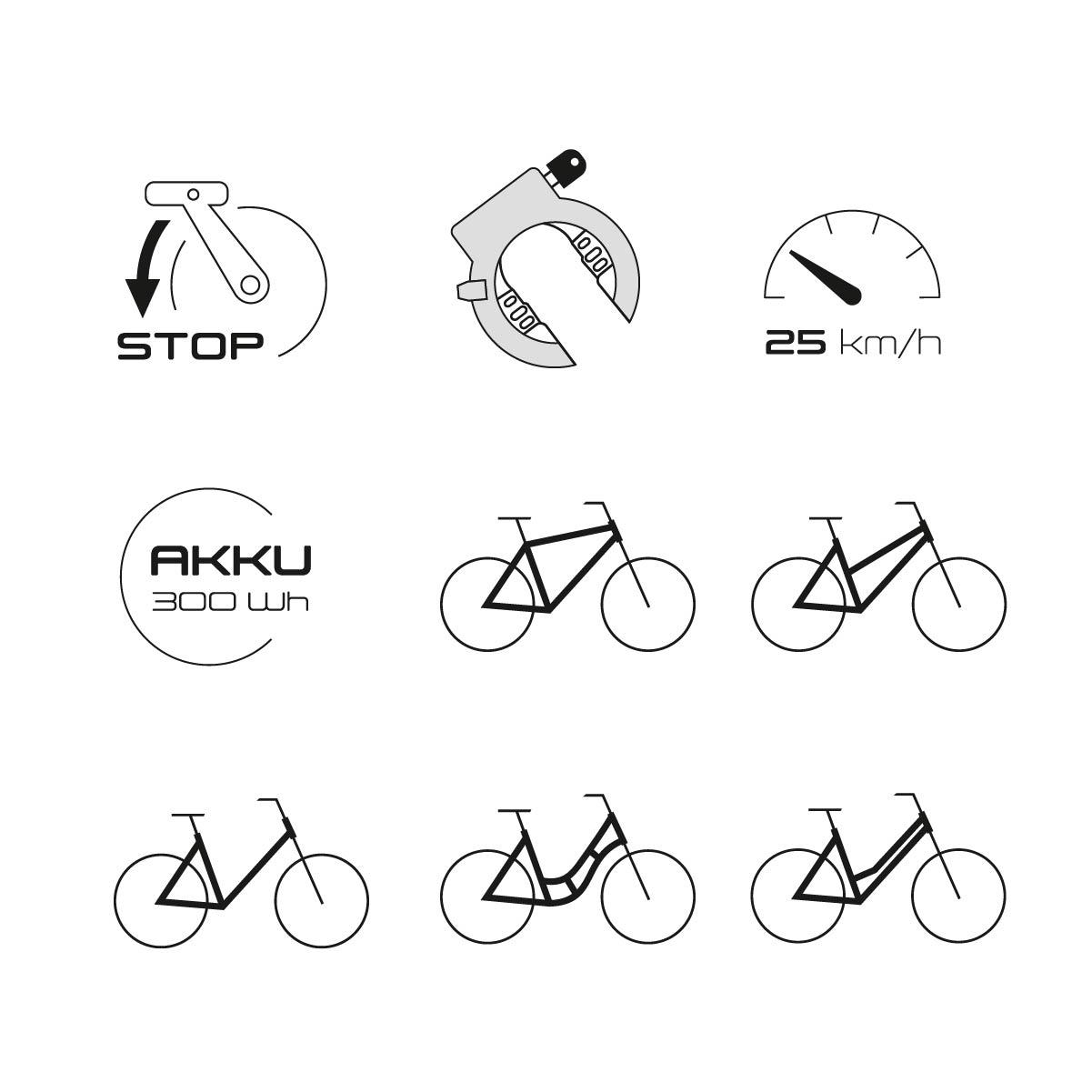 Diamant Rahmenformen Symbole Bedeutung Vektorgrafik Reinzeichnung Fahrrd E-Bike