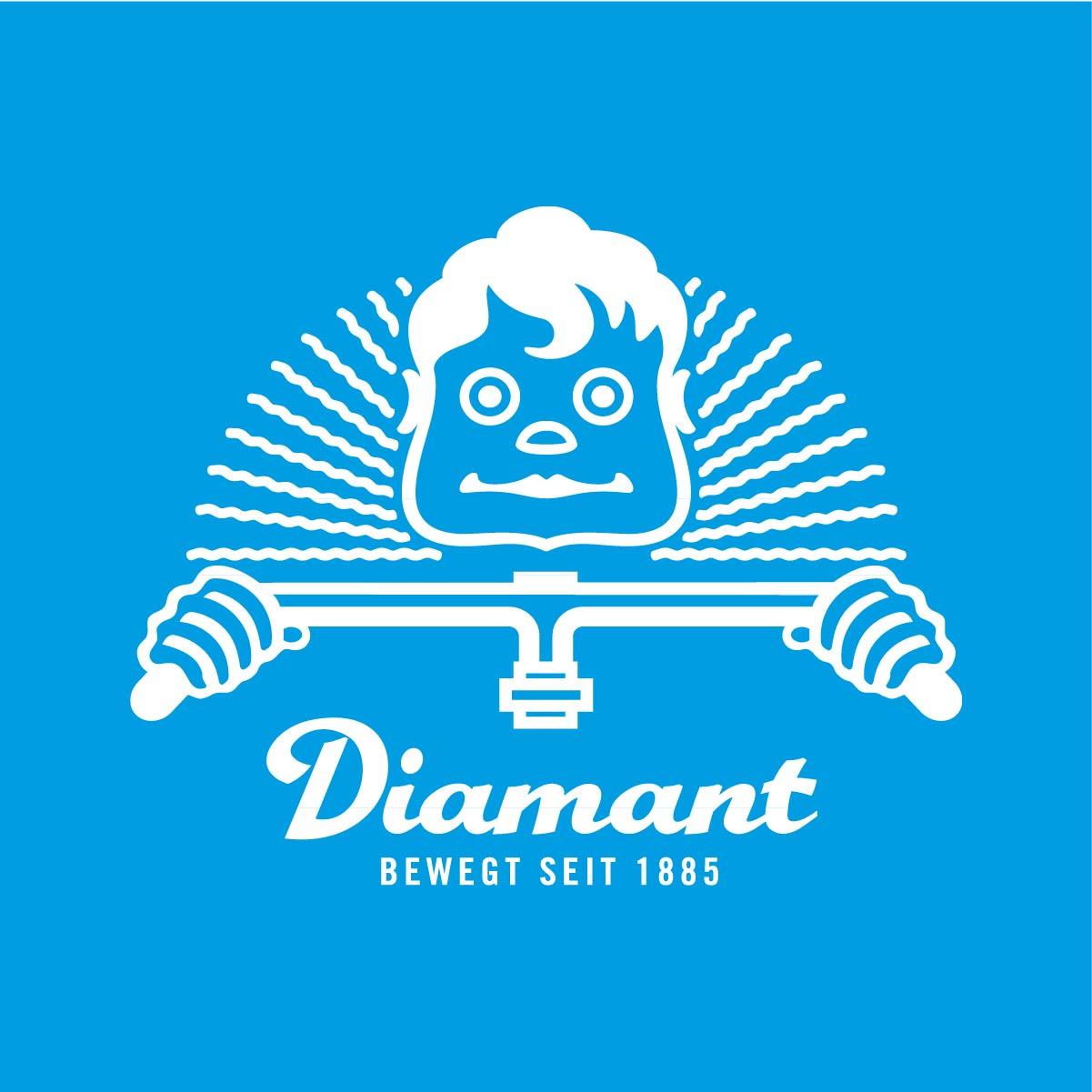 Diamant Logo Entwurf Wort-Bild-Marke Lenkerkopf Plakette Köpfchen