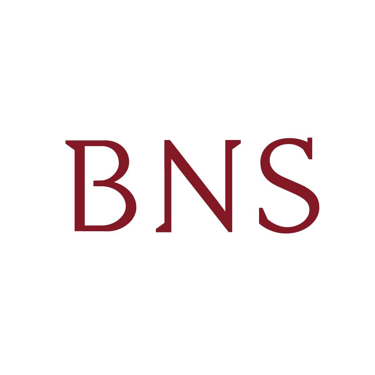 Wort-Marke Wortmarke Unternehmensdesign BNS Mainz Firmenlogo